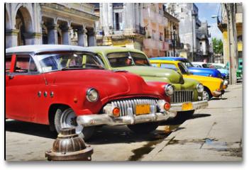 Plakat - Colorful Havana cars