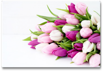 Plakat - White and pink tulips on white wooden table. Holiday background, copy space