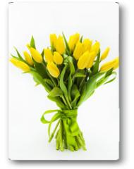 Plakat - Tulips