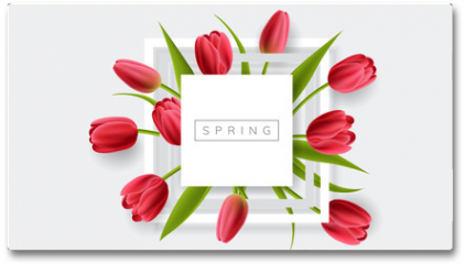 Plakat - White frame with red tulip flower and green leaf. Realistic vector illustration for spring and nature design, banner with square frame