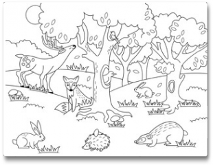 Plakat - Cartoon forest coloring vector illustration