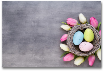 Plakat - Pink tulip with pink eggs nest on a gray background. Easter greetings card.