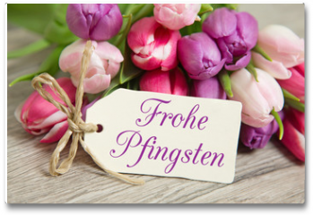 Plakat - Tulpen und Karte: Frohe Pfingsten