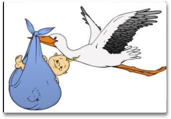 Plakat - Baby, Klapperstorch, Geburt, Schwanger, Schwangerschaft
