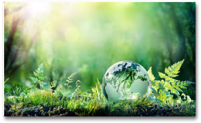 Plakat - Globe On Moss In Forest - Environmental Concept