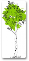 Plakat - Stylized birch tree with green crown and white trunk