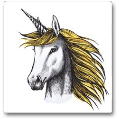 Plakat - Unicorn horse sketch of fairy or heraldic animal