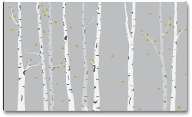 Plakat - Birch Tree Silhouette Background