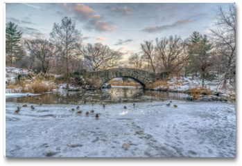 Plakat - Central Park, New York City in winter