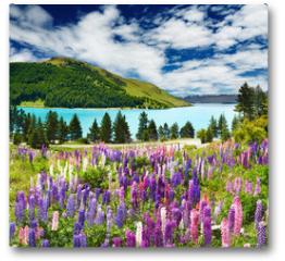 Plakat - Lake Tekapo, New Zealand