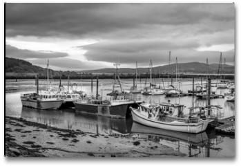 Plakat - Irish Fish Boats in Harbor