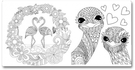 Plakat - Flamingos and ostriches couples set for card, invitation and coloriing book,coloring page or colouring picture. Vector illustration