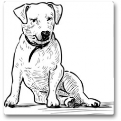 Plakat - Sketch of a sitting lap dog