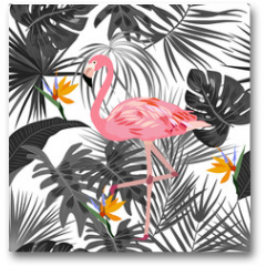 Plakat - Tropical vector seamless pattern with flamingo.