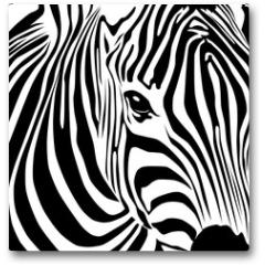 Plakat - Zebra