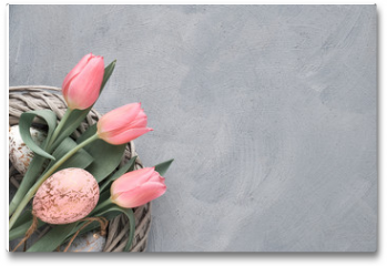 Plakat - Springtime or Easter background with pink tulips and Easter eggs in wattle ring on grey concrete, text space