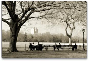 Plakat - central park
