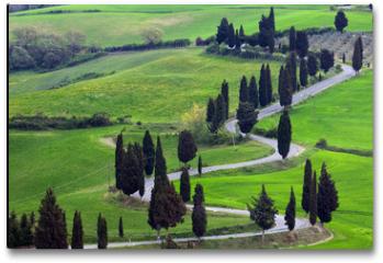 Plakat - landscapes