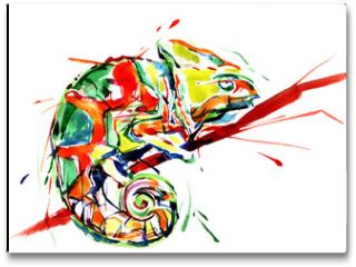 Plakat - chameleon