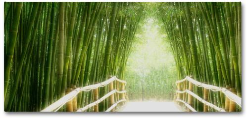 Plakat - Bambus-Allee