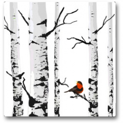 Plakat - Bird of birches, vector drawing with editable elements.
