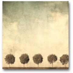 Plakat - grunge image of trees