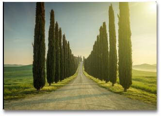 Plakat - Tuscany, Landscape. Italy