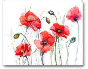 Plakat - poppy