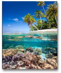 Plakat - Tropical island