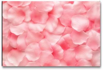 Plakat - Beautiful delicate pink rose petals