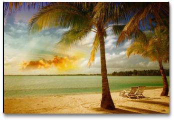 Plakat - Beautiful marine landscape with tree on a pristine beach