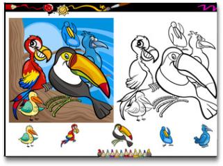 Plakat - exotic birds cartoon coloring page set