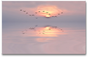 Plakat - amanecer de colores suaves