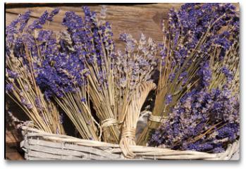 Plakat - Sommerernte - Lavendel getrocknet im Korb