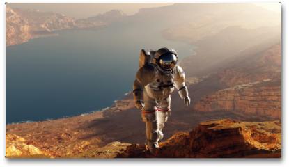 Plakat - The astronaut