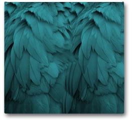 Plakat - Aqua Feathers
