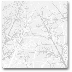 Plakat - Branches texture pattern. Soft background.