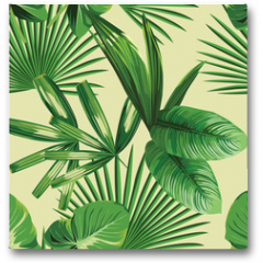 Plakat - tropical  palm leaves seamless background