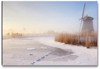 Plakat - Dutch windmills in a foggy winter landscape in the morning