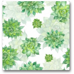 Plakat - Watercolor Succulent Pattern on White Background