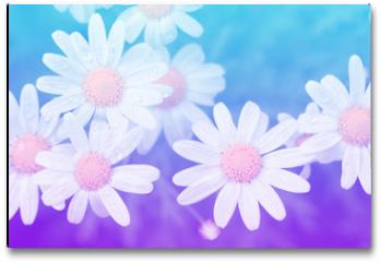 Plakat - Flower pastel style.