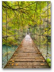 Plakat - Parque Nacional Fragas del Eume