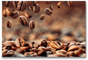 Plakat - Ziarna kawy