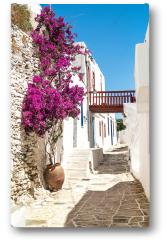 Plakat - Tradycyjna aleja grecka na wyspie Sifnos, Grecja