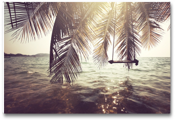 Plakat - Tropiki