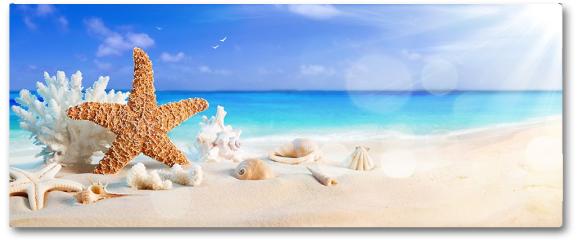 Plakat - Muszelki na brzegu tropikalnej plaży