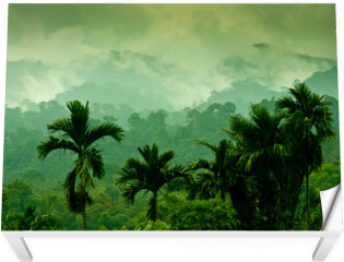 Naklejka na stół i biurko - Selva de Sumatra