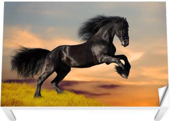 Naklejka na stół i biurko - Koń fryzyjski galopujący o wschodzie słońca
