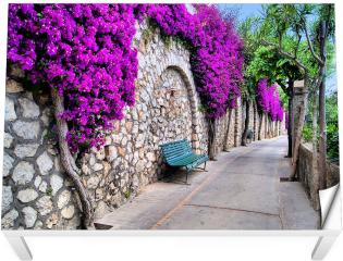 Naklejka na stół i biurko -  Tętniąca życiem ścieżka kwiatowa w Capri, Włochy