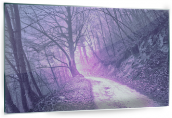 Panel szklany do kuchni - Magical foggy purple, serenity pantone color light in mystic forest with road.